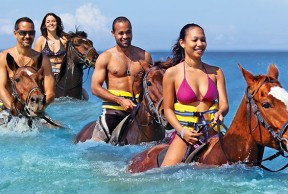 Dunn's River Falls and Beach Horseback Riding Excursions