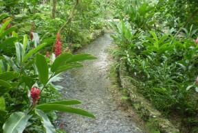 Dunn's River Falls & Konoko Falls, Taino Museum & River  Gardens Excursion